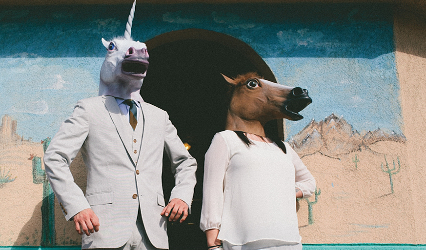 horse and unicorn engagement