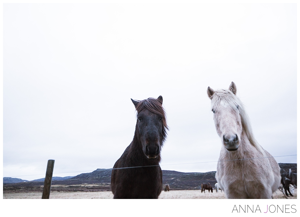 Iceland 2015 | Anna Jones Photography