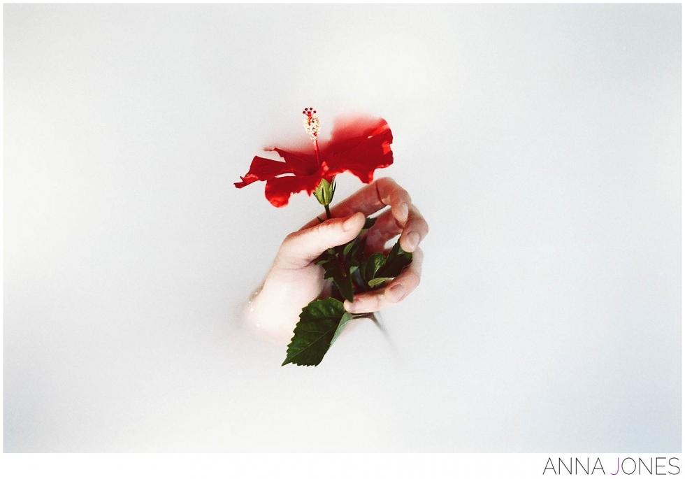 magnoliasbloom