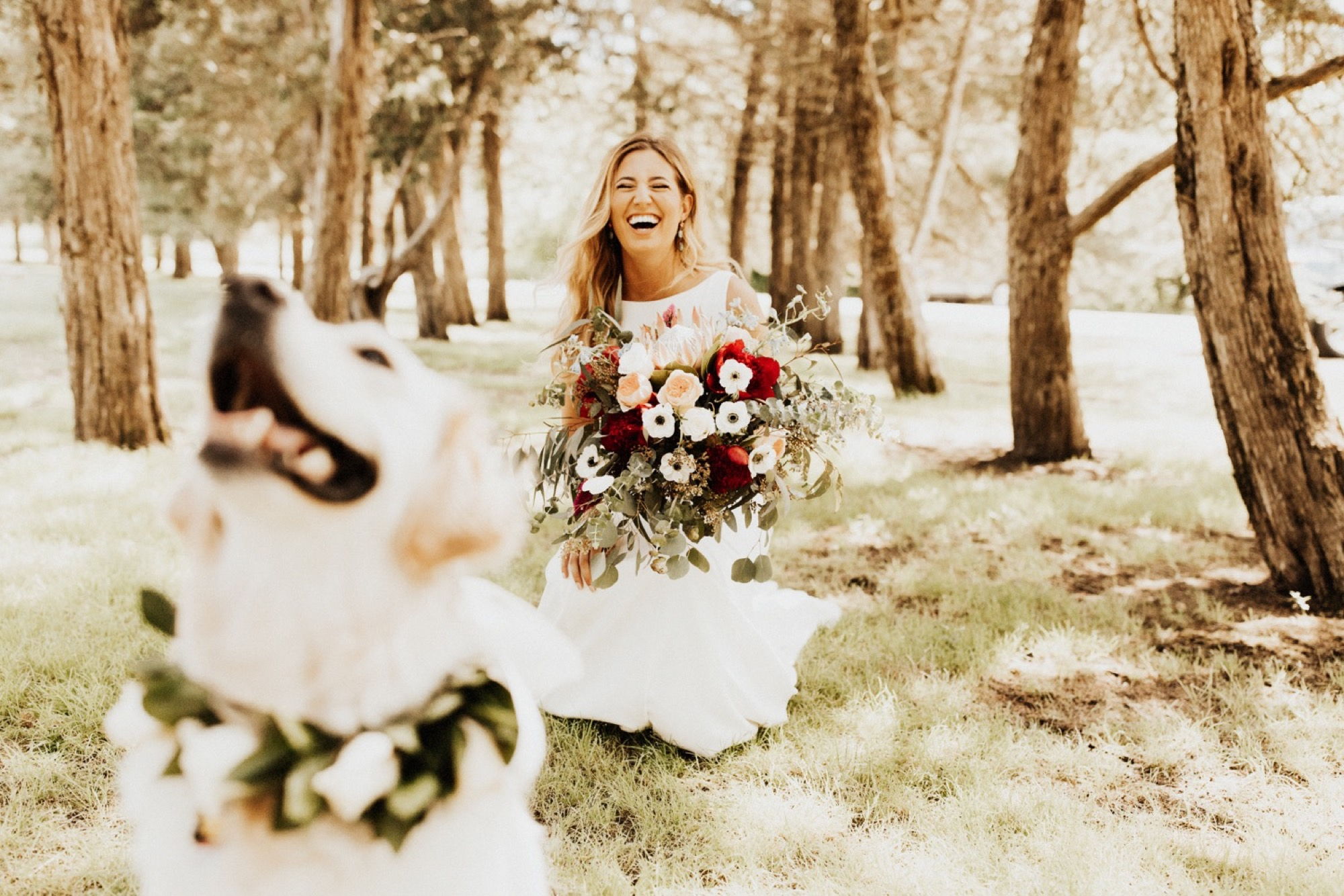floral crown on dog in wedding at Stonehaven barn