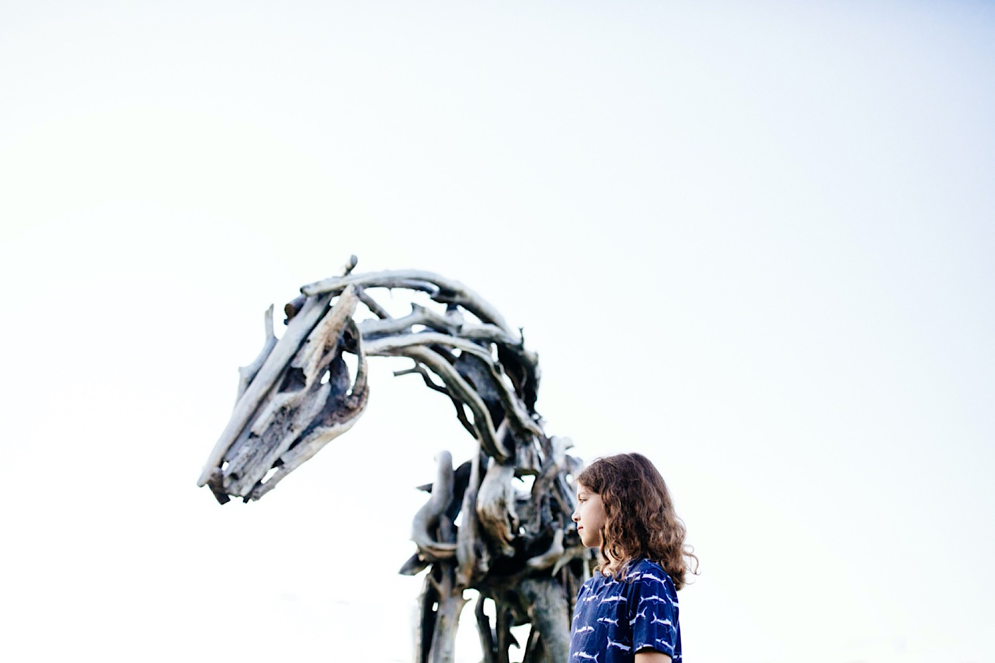 pappajohn sculpture park Des Moines family photographer Deborah butterfield horse